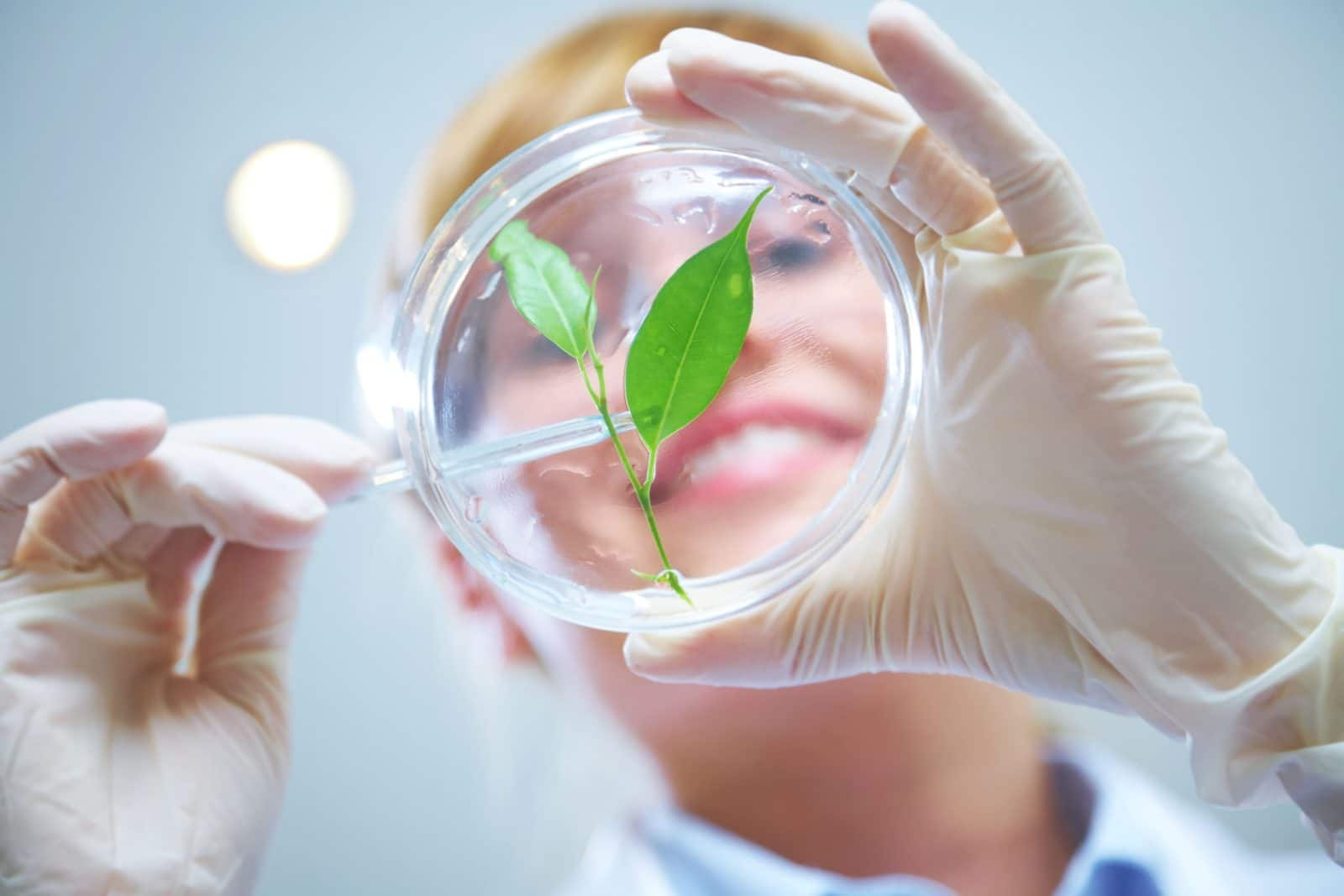 Флоралюкс — инновационный метабиотик